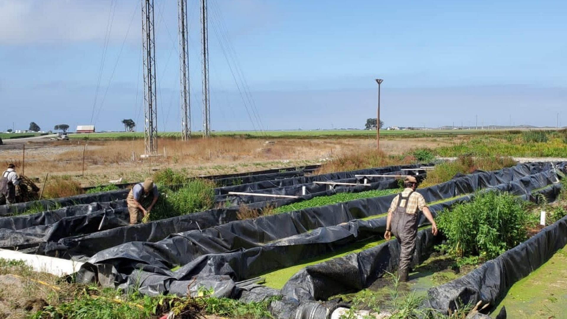 CC&R crewmembers working on a bioreactor that treats agricultural runoff.