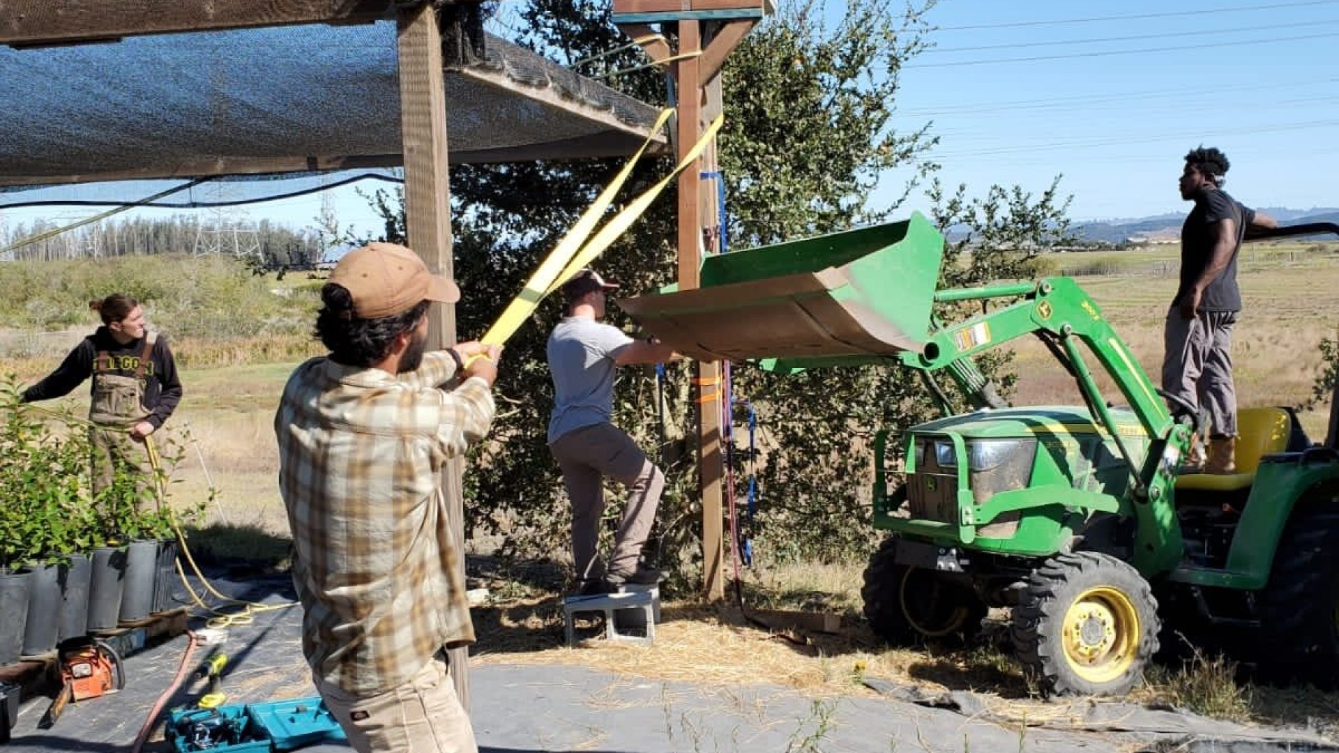Raising an owl box for rodent control at the CC&R greenhouse.