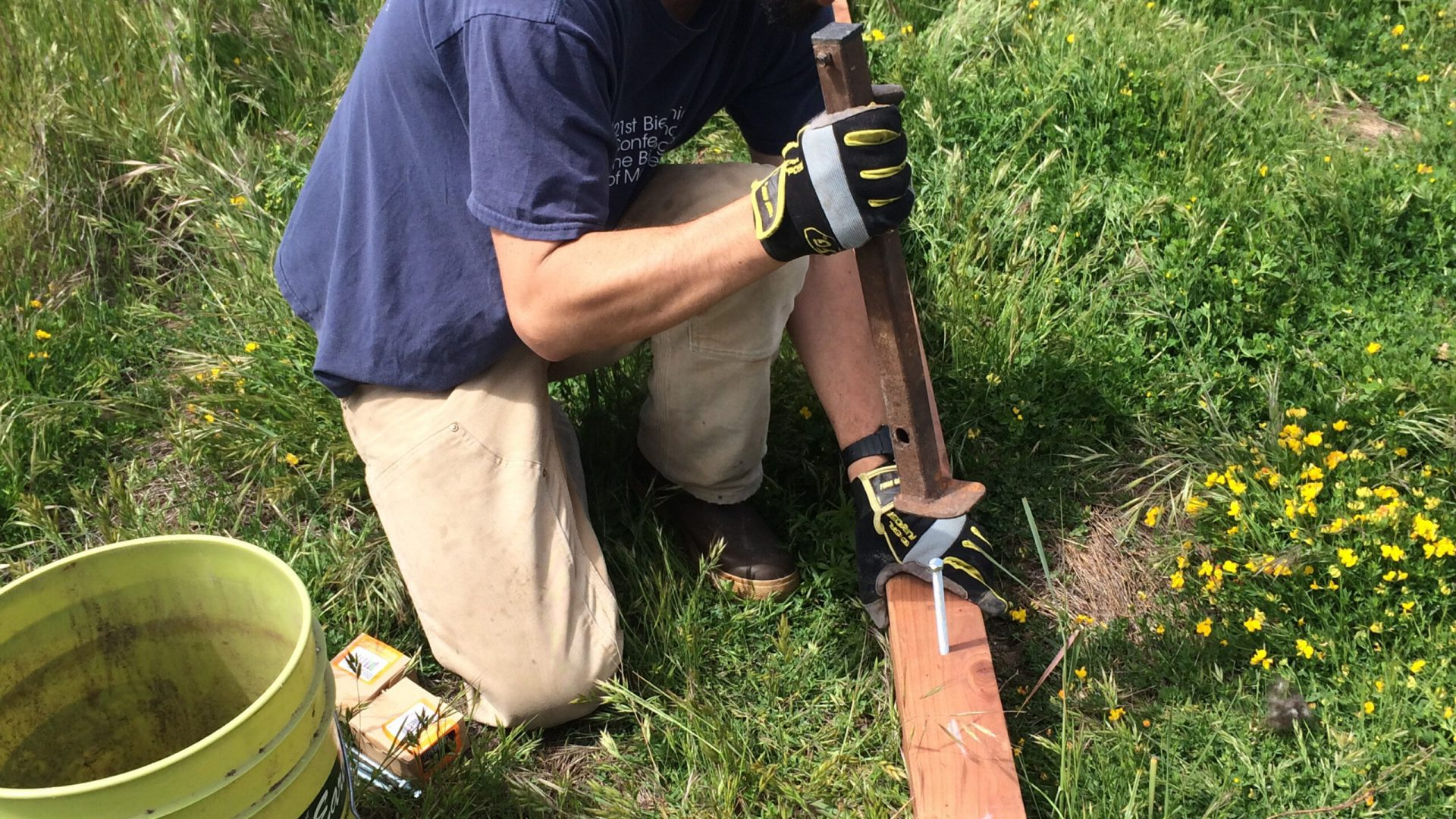 A CC&R crewmember constructs a raptor perch for rodent control at a restoration site.